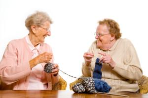 Merit Ladies Knitting